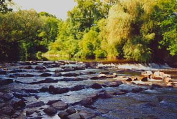 La passe à poisson de kolbsheim