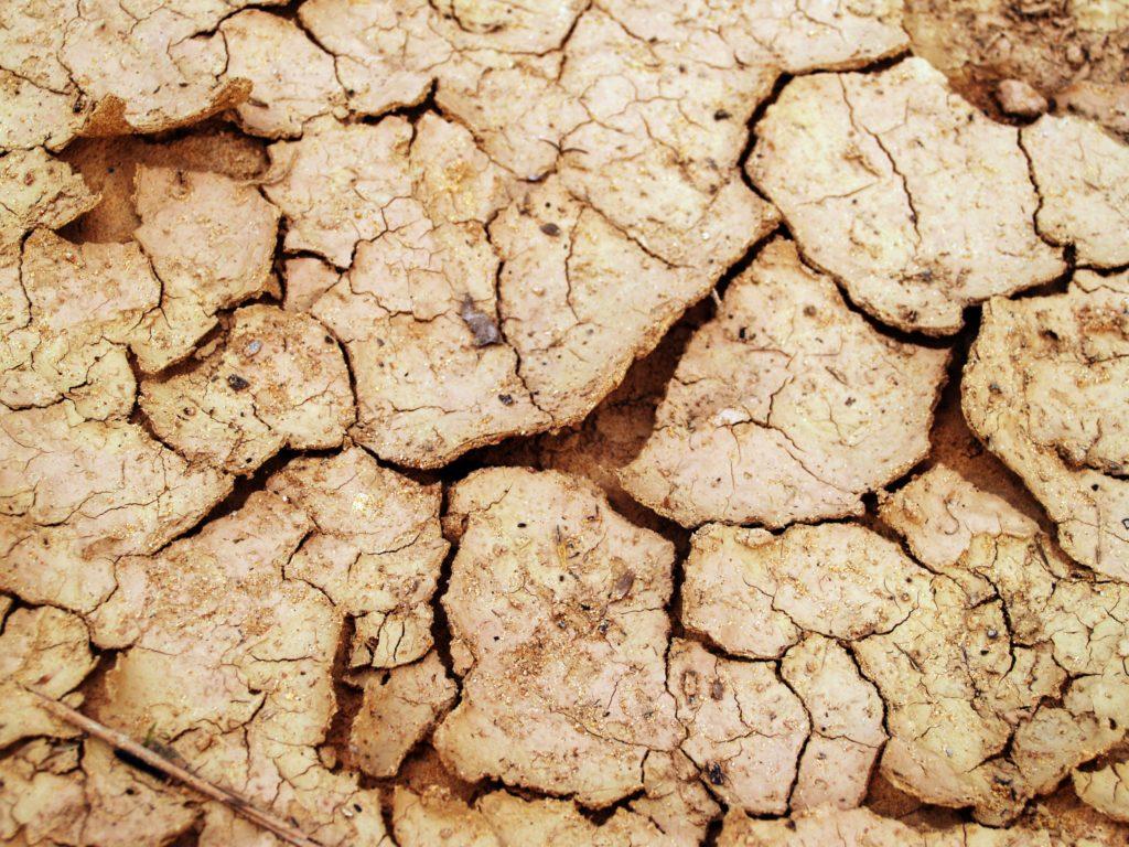 Terre sécheresse